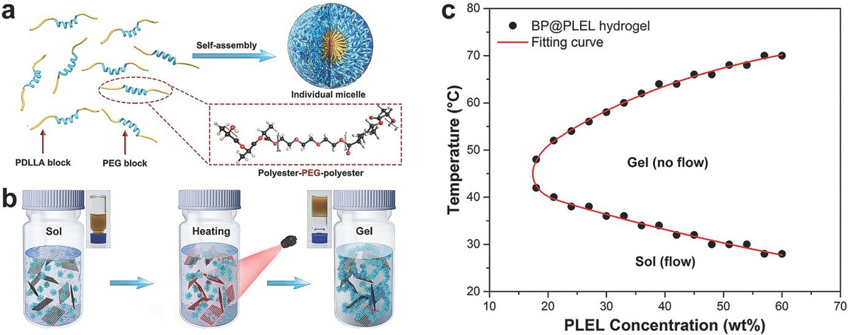 Black-Phosphorus-Incorporated Hydrogel as a Sprayable and Biodegradable Photothermal Platform for Postsurgical Treatment of Cance